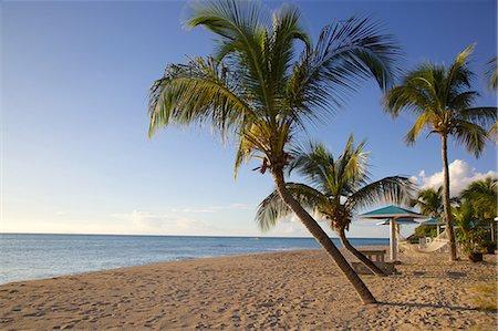 Hammock, Turner's Beach, Antigua, Leeward Islands, West Indies, Caribbean, Central America Stock Photo - Premium Royalty-Free, Code: 6119-07541603