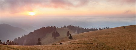 Early morning fog and sunrise, Belchen Mountain, Black Forest, Baden Wurttemberg, Germany, Europe Stock Photo - Premium Royalty-Free, Code: 6119-07651876