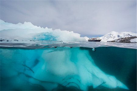 Above and below view of glacial ice near Wiencke Island, Neumayer Channel, Antarctica, Polar Regions Stock Photo - Premium Royalty-Free, Code: 6119-07734926