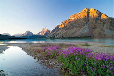 Bow Lake at sunrise, Banff National Park, UNESCO World Heritage Site, Alberta, Rocky Mountains, Canada, North America Stock Photo - Premium Royalty-Free, Code: 6119-07845483