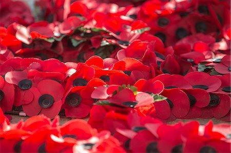 detail - Poppies at War Memorial, London, England, United Kingdom, Europe Stock Photo - Premium Royalty-Free, Code: 6119-08242890