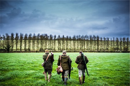 Three guns walking towards a drive, Wiltshire, England, United Kingdom, Europe Stock Photo - Premium Royalty-Free, Code: 6119-08420446
