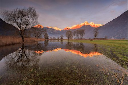 dreamy - Natural reserve of Pian di Spagna  flooded with snowy peaks reflected in the water at sunset, Valtellina, Lombardy, Italy, Europe Stock Photo - Premium Royalty-Free, Code: 6119-08420405