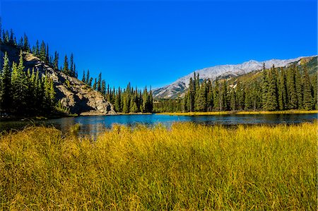 View of lake in Denali National Park, Alaska, United States of America, North America Stock Photo - Premium Royalty-Free, Code: 6119-08797287