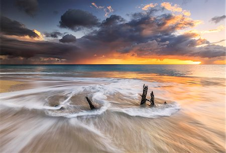 The waves and caribbean sunset frames tree trunks on Ffryes Beach, Antigua, Antigua and Barbuda, Leeward Islands, West Indies, Caribbean, Central America Stock Photo - Premium Royalty-Free, Code: 6119-08703662