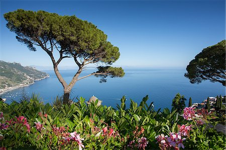 Villa Rufolo, Ravello, Costiera Amalfitana (Amalfi Coast), UNESCO World Heritage Site, Campania, Italy, Europe Stock Photo - Premium Royalty-Free, Code: 6119-08703790