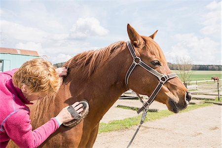 farmhand (female) - Woman grooming a horse in ranch, Bavaria, Germany Stock Photo - Premium Royalty-Free, Code: 6121-08106662