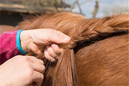 farmhand (female) - Woman's hands making braids of horse hair, Bavaria, Germany Stock Photo - Premium Royalty-Free, Code: 6121-08106667
