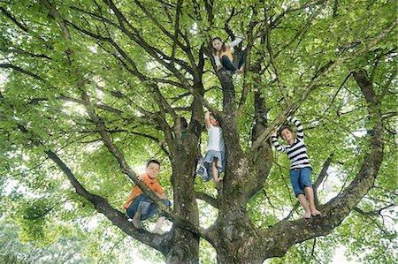Children climbing on tree, Munich, Bavaria, Germany Stock Photo - Premium Royalty-Free, Code: 6121-08361618