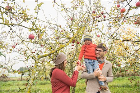 family apple orchard - Son on father's shoulder giving apples to his mother, Bavaria, Germany Stock Photo - Premium Royalty-Free, Code: 6121-08522240