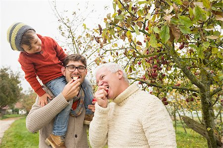 family apple orchard - Son watching his father and grandfather eating  apple in an apple orchard, Bavaria, Germany Stock Photo - Premium Royalty-Free, Code: 6121-08522247