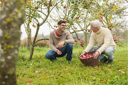 family apple orchard - Father and son are happy with the apple harvest in an apple orchard, Bavaria, Germany Stock Photo - Premium Royalty-Free, Code: 6121-08522244