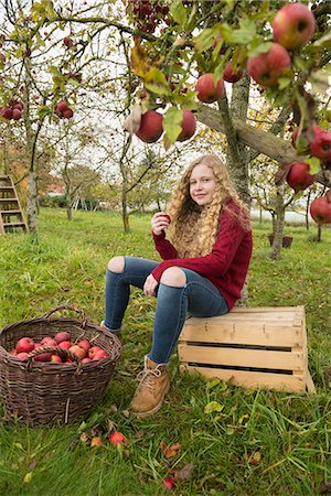 Teenage girl sitting on a crate under an apple tree in an apple orchard farm, Bavaria, Germany Stock Photo - Premium Royalty-Free, Code: 6121-08522250