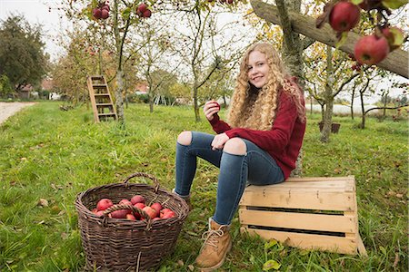 Teenage girl sitting on a crate under an apple tree in an apple orchard farm, Bavaria, Germany Stock Photo - Premium Royalty-Free, Code: 6121-08522251