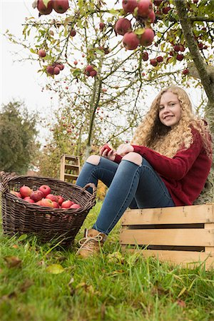 Teenage girl sitting on a crate under an apple tree in an apple orchard farm, Bavaria, Germany Stock Photo - Premium Royalty-Free, Code: 6121-08522252