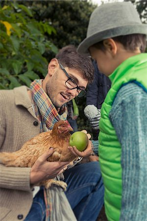 Father holding a chicken bird and son feeding apple, Bavaria, Germany, Stock Photo - Premium Royalty-Free, Code: 6121-08522264