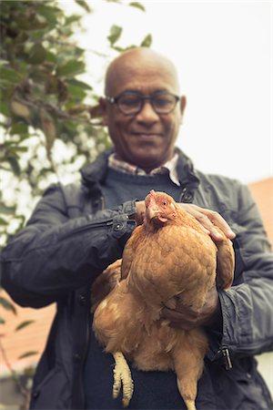 Black man stroking a chicken bird in farm, Bavaria, Germany Stock Photo - Premium Royalty-Free, Code: 6121-08522265