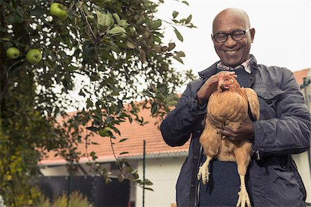 Black man stroking a chicken bird and smiling in farm, Bavaria, Germany Stock Photo - Premium Royalty-Free, Code: 6121-08522266