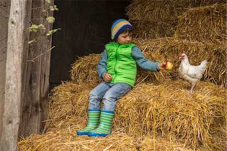 Little boy sitting on straw in the stable and feeding apple to chicken bird, Bavaria, Germany Stock Photo - Premium Royalty-Free, Code: 6121-08522269