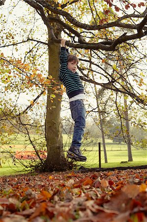 Boy playing on tree outdoors Stock Photo - Premium Royalty-Free, Code: 6122-07703248