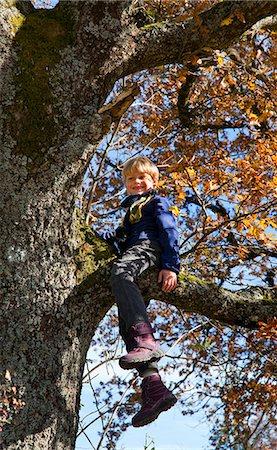 Boy playing in tree Stock Photo - Premium Royalty-Free, Code: 6122-07703257