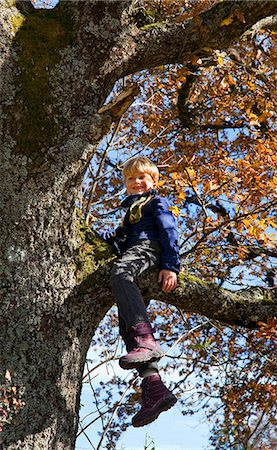 Boy playing in tree Stock Photo - Premium Royalty-Free, Code: 6122-07703257