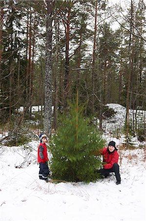 snow christmas tree white - Father and son picking Christmas tree Stock Photo - Premium Royalty-Free, Code: 6122-07707393