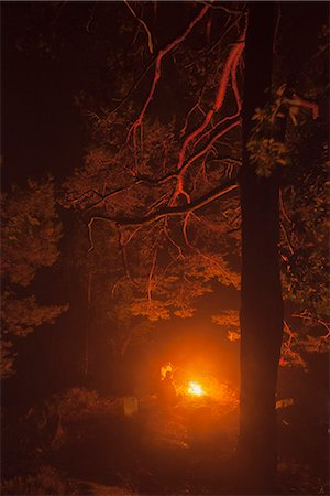 Sweden, Blekinge, Men sitting at camp fire Stock Photo - Premium Royalty-Free, Code: 6126-08635741