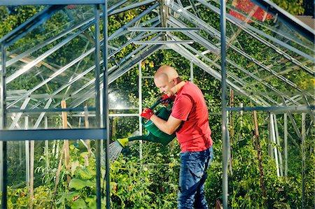 skinhead - Finland, Paijat-Hame, Heinola, Man watering plants in greenhouse Stock Photo - Premium Royalty-Free, Code: 6126-08636524