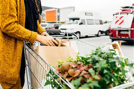Midsection of woman with shopping cart full of purchases in parking area Stock Photo - Premium Royalty-Free, Code: 6127-08667381