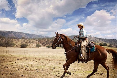 Woman wearing cowboy hat and spats riding horseback on a ranch Stock Photo - Premium Royalty-Free, Code: 6128-08799117