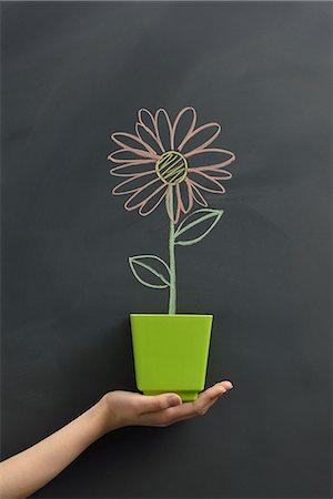 draw black women - Flower drawn on the blackboard Stock Photo - Premium Royalty-Free, Code: 613-07780836