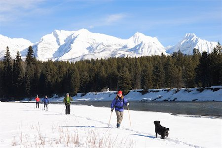 People cross country skiing with dog Stock Photo - Premium Royalty-Free, Code: 613-01388448