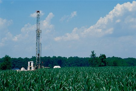Oil rig in agricultural field Stock Photo - Premium Royalty-Free, Code: 625-01252583