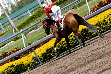 Jockey riding a horse in a horse race Stock Photo - Premium Royalty-Free, Code: 625-01744946