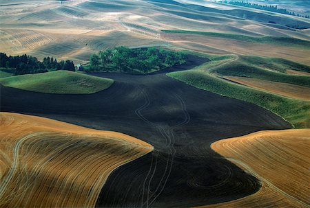 Aerial view of contour plowed fields, Washington state Stock Photo - Premium Royalty-Free, Code: 625-01745875