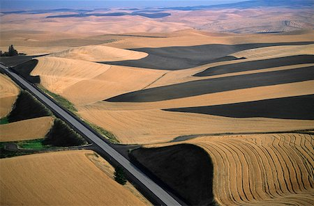 Aerial view of contour plowed fields, Washington state Stock Photo - Premium Royalty-Free, Code: 625-01745990