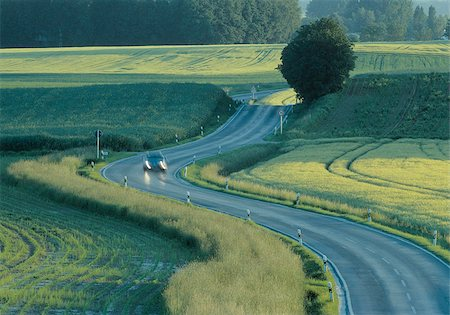Country road after rainfall Stock Photo - Premium Royalty-Free, Code: 628-02953911