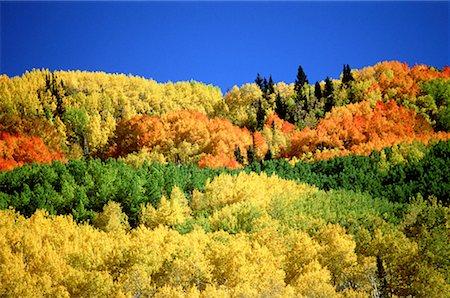 Autumn Hills Stock Photo - Premium Royalty-Free, Code: 621-00740090