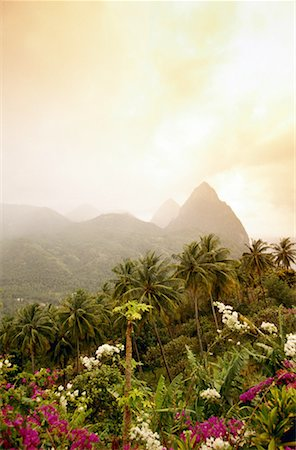 Pitons, St. Lucia Stock Photo - Premium Royalty-Free, Code: 621-00740351
