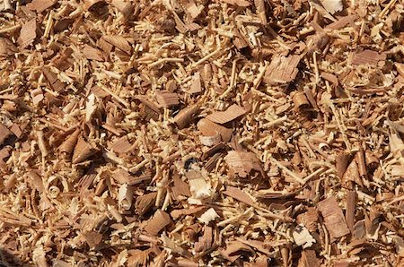 Wood Chips Stock Photo - Premium Royalty-Free, Code: 621-01003551