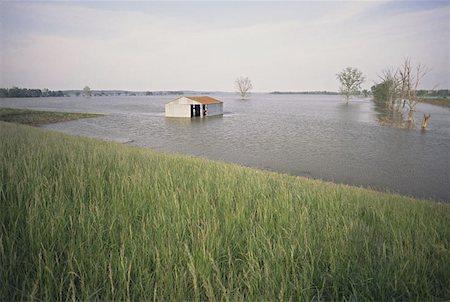 flooded homes - Farm Flood Damage Stock Photo - Premium Royalty-Free, Code: 621-01003875