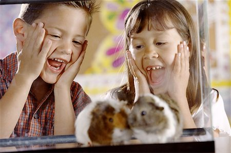Students with Hamsters Stock Photo - Premium Royalty-Free, Code: 621-01229319