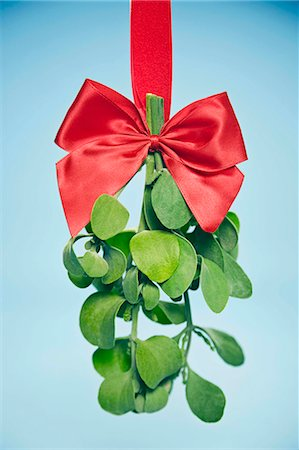Miseltoe hanging from bow Stock Photo - Premium Royalty-Free, Code: 621-03568234