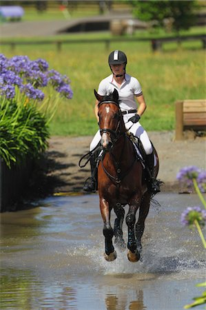 equestrian - Horse Rider Crossing Water, Equestrian Event Stock Photo - Premium Royalty-Free, Code: 622-05786747