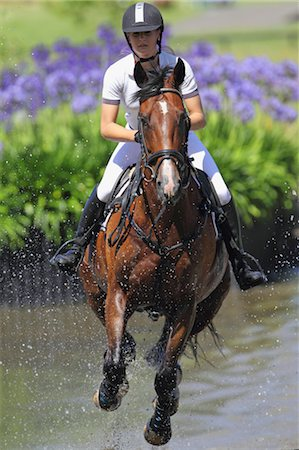 equestrian - Horse Rider Crossing Water, Equestrian Event Stock Photo - Premium Royalty-Free, Code: 622-05786769