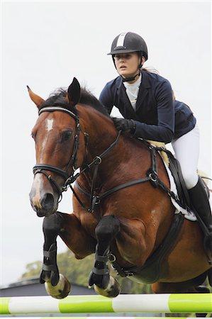 equestrian - Young Woman Horseback Rider Jumping Hurdle Stock Photo - Premium Royalty-Free, Code: 622-05786760