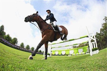 equestrian - Horseback Rider Jumps over Hurdle Stock Photo - Premium Royalty-Free, Code: 622-05786775