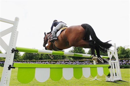 Horse Rider Jumping Hurdle Stock Photo - Premium Royalty-Free, Code: 622-05786790