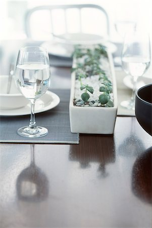 Plant Pot And Dishware On Dining Table Stock Photo - Premium Royalty-Free, Code: 622-06009625